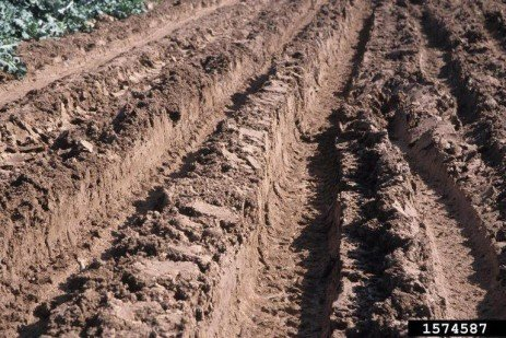 Avoiding and Mitigating Soil Compaction Associated with Natural Gas Development