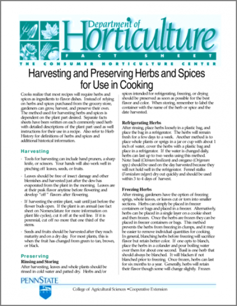 Harvesting and Preserving Herbs and Spices for Use in Cooking