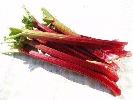 Rhubarb Love it for its Taste; Eat it for Your Health