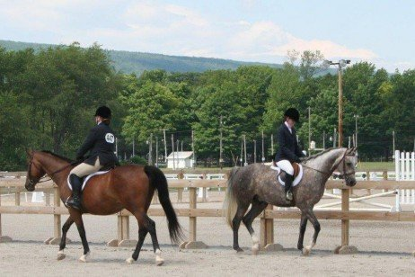 Biosecurity at Horse Events