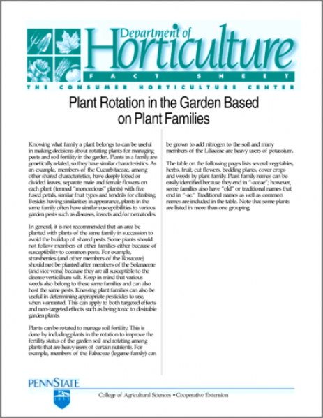 Plant Rotation in the Garden Based on Plant Families