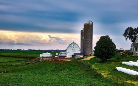 Top 5 Dairy States Vary in Production, Feed Cost, and Income over Feed Cost