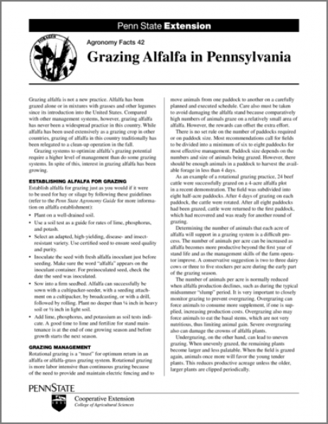 Grazing Alfalfa in Pennsylvania