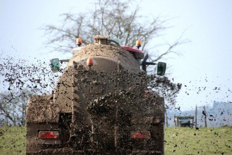 Spreading Manure Now Can Lead to 'Incidental Transfer' to Streams