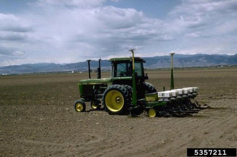 Air Seeder and Corn Planter Comparison for Corn for Silage