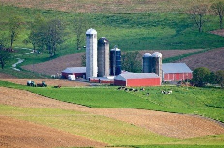 Pennsylvania Dairy Farm Size and Profitability