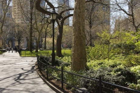 Sustaining and Funding an Urban Forestry Program