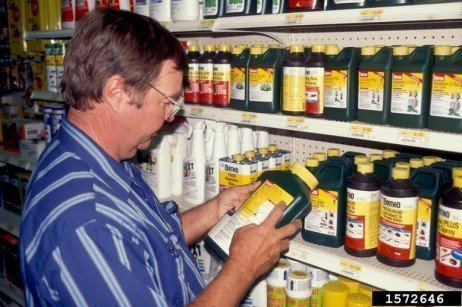 General Guidelines for Pesticide Safety