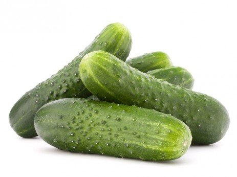 Cucumber Production