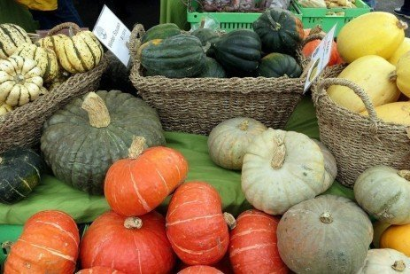 Winter Squash Enhances Fall Meals