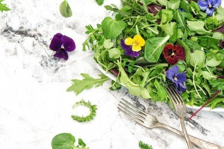 A Consumer's Guide to Edible Flowers