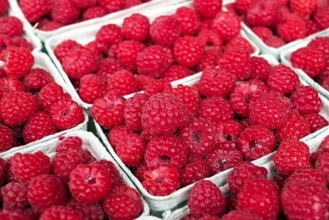Buying Guide: Fruit