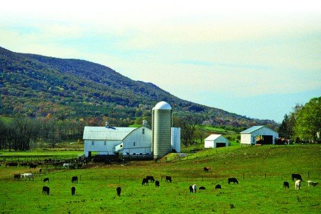 The Joy of Farm Watching: A Roadside Guide to Pennsylvania Agriculture