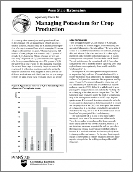 Managing Potassium for Crop Production