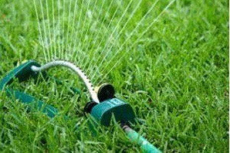 Don't Over Fertilize Your Lawn this Spring