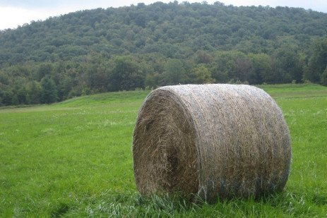 Safely Making and Handling Large Package Hay Bales