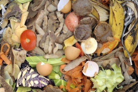 Reducing Food Waste with Food Safety in Mind