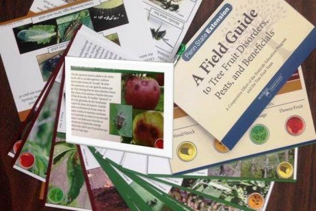 Orchard IPM - Field Guide to Tree Fruit Disorders, Pests, and Beneficials