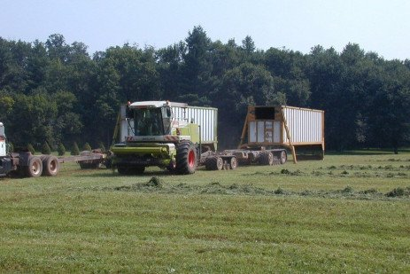 Managing Soil Compaction Caused by Small Grain Silage Harvest