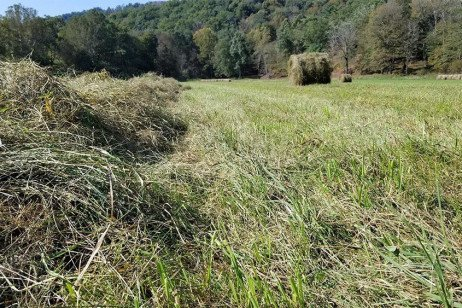 Challenges and Considerations for Fall Hay Harvest