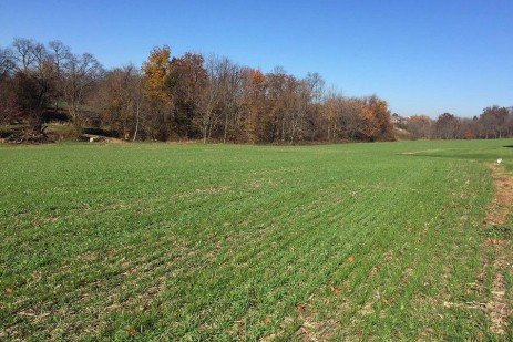 There is Still Time to Plant Cover Crops