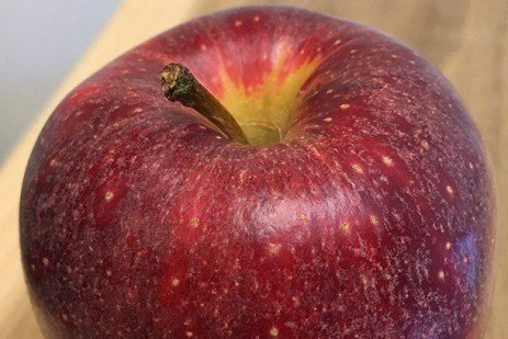 Fruit Disorders: Prevention of Scarf Skin on Apple Fruit