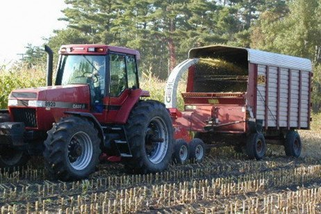Weed Control after Silage Harvest or in Fallow Settings