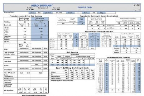 Dairy Sense: Reviewing the DHIA 202 Sheet