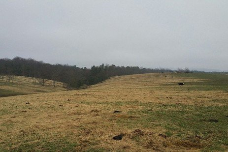 Managing for Nutrient and Soil Retention in Pastured Lands