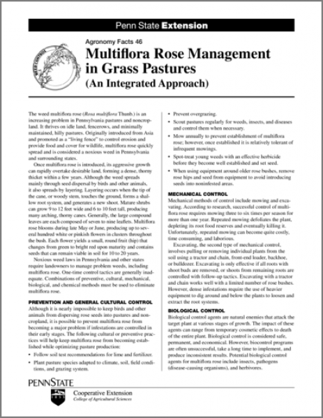 Multiflora Rose Management in Grass Pastures (An Integrated Approach)