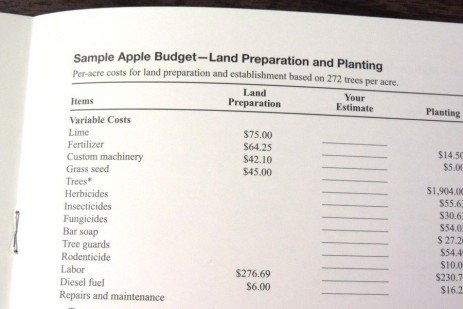 Tree Fruit Production Budgets