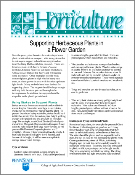 Supporting Herbaceous Plants in a Flower Garden