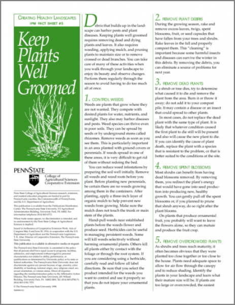 Keeping Plants Well Groomed