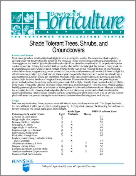 Shade Tolerant Trees, Shrubs, and Groundcovers