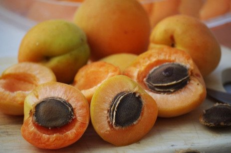 Home Orchards: Stone Fruit Variety Selection