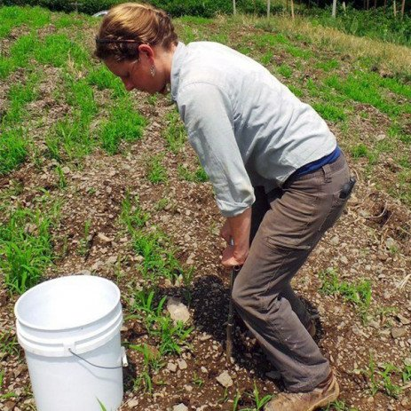 Start Farming: Establishing Farmers Prepare Fields for Fruit Trees