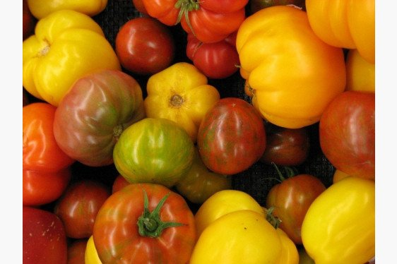 Sample Tomato Budget: Heirloom Type