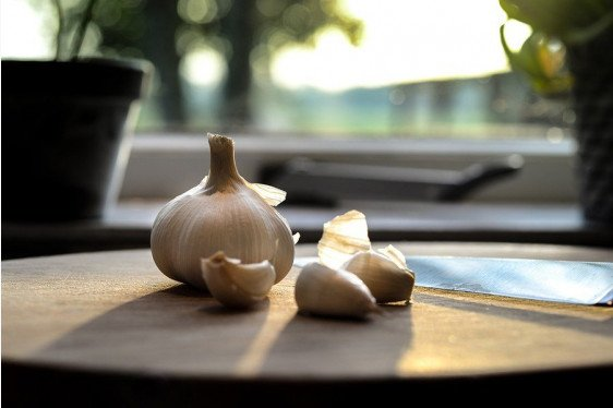 It's Time to Grow Garlic!
