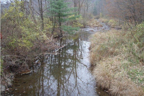WikiWatershed: An Online Toolkit for Water Resource Managers