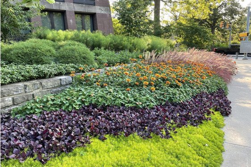Estimating & Bidding for Landscape Installation