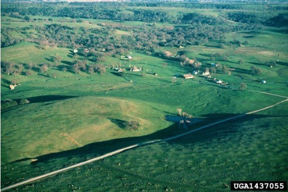 Land Planning: The Good, the Bad, the Disasters