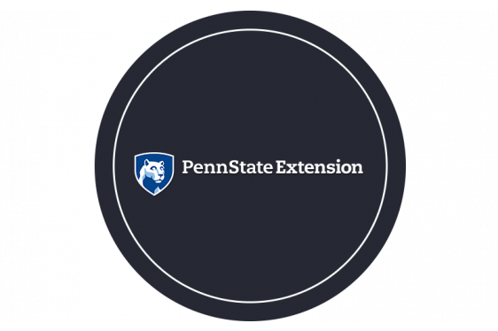 Penn State Center's Stormwater Mitigation Initiatives in Pittsburgh