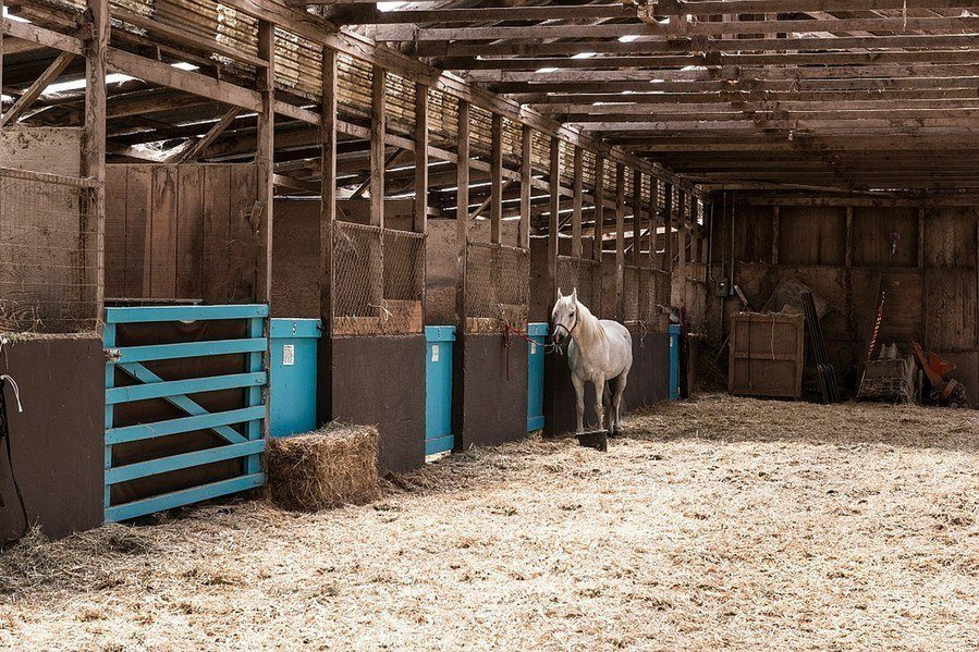 Horse stable flooring materials and drainage for Horse barn materials