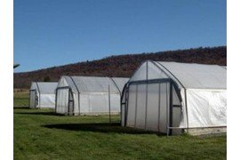 Dealing with High Soluble Salt Levels in High Tunnels