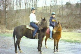 Horse Owners - Are you Ready for Spring?