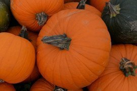 Deep Orange Vegetables Give Autumn Meals Nutritious Boost