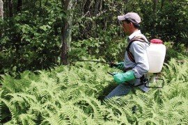 Backpack Sprayer Calibration for Woodland Applications