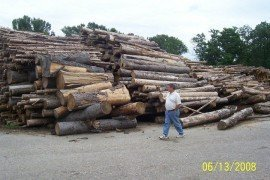 Big logs, small logs...which is better?