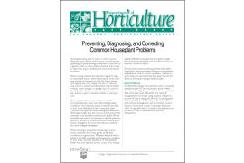 Preventing, Diagnosing, and Correcting Common Houseplant Problems