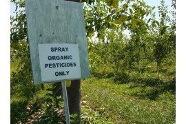 Organic Production and Marketing